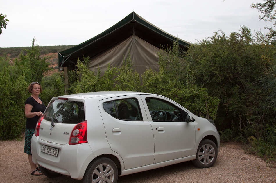 Addo Elephant National Park, 13 januari 2011
