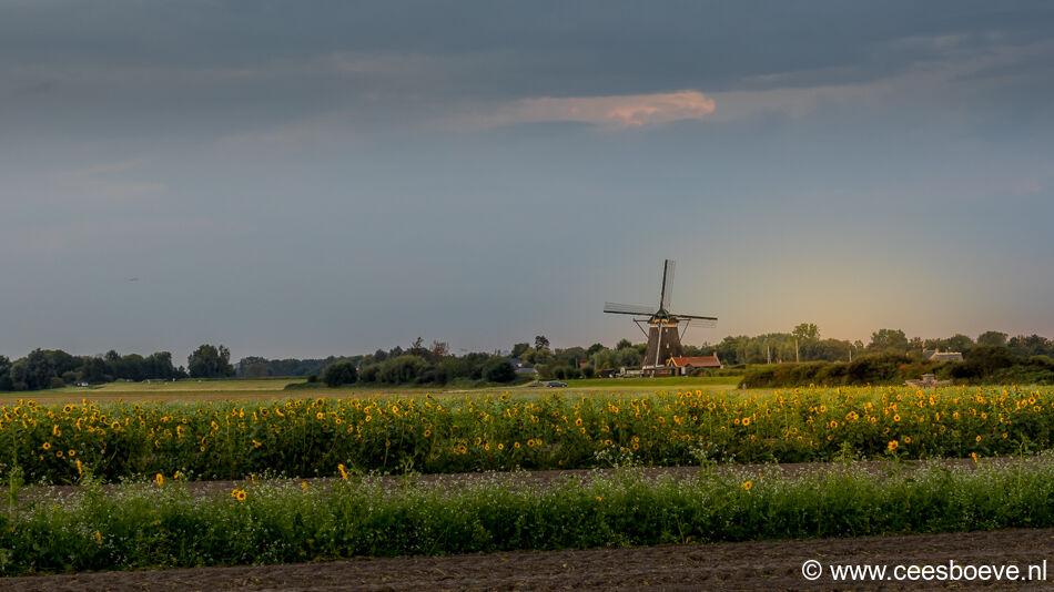 Zonsondergang molenviergang   Zevenhuizen, 9 september 2021