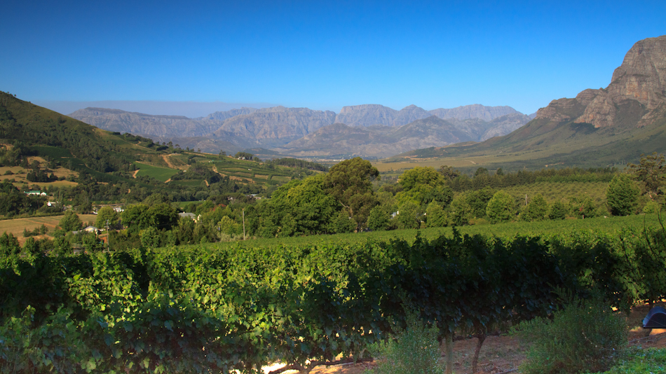 Wijntour, Stellenbosch en omgeving, 6 januari 2011