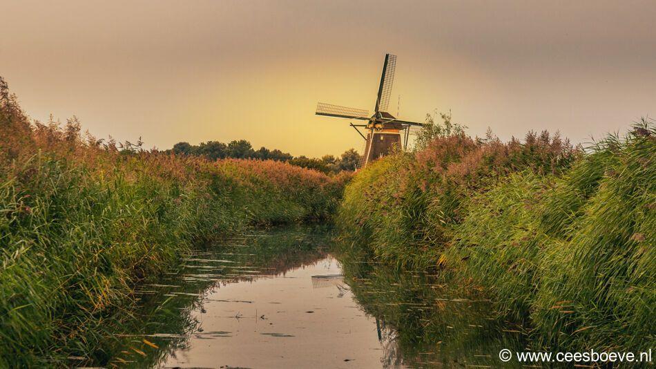 Molonsondergang molenviergang | Zevenhuizen, 9 september 2021